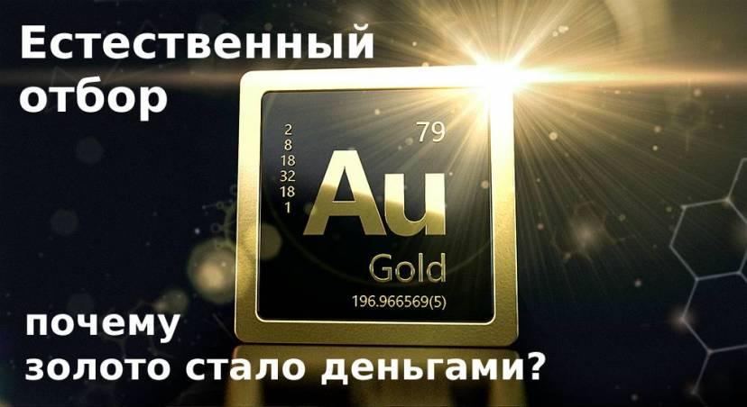 Естественный отбор: почему золото стало деньгами