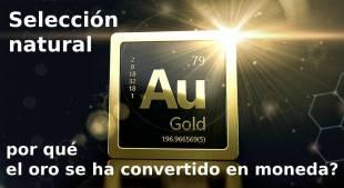 Selección natural: por qué el oro se ha convertido en moneda?