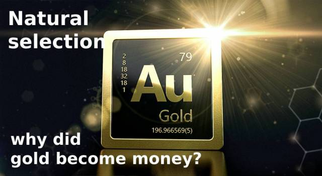 Natural selection: why did gold become money?